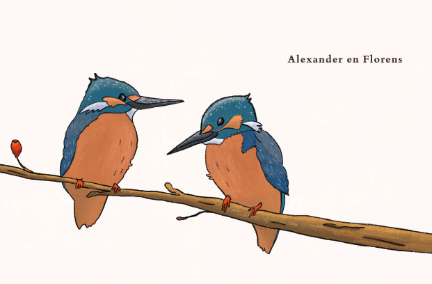 geboortekaartje tweeling vogeltjes ijsvogeltjes